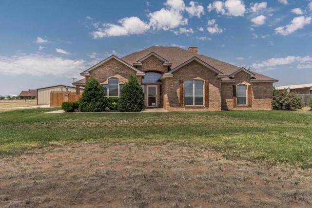 5250 Mesquite Springs Trl, Amarillo, TX 79119 (#18-116586) :: Gillispie Land Group