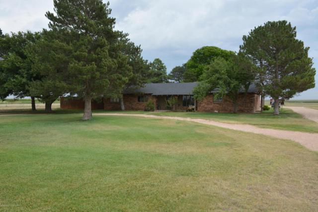 1849 County Road 518, Dimmitt, TX 79027 (#18-116678) :: Edge Realty