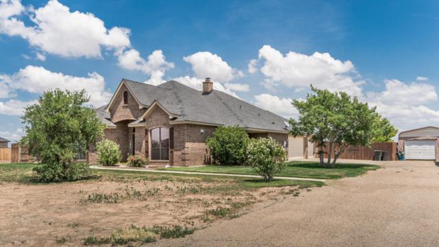 5601 Buffalo Springs Trl, Amarillo, TX 79119 (#18-116723) :: Edge Realty