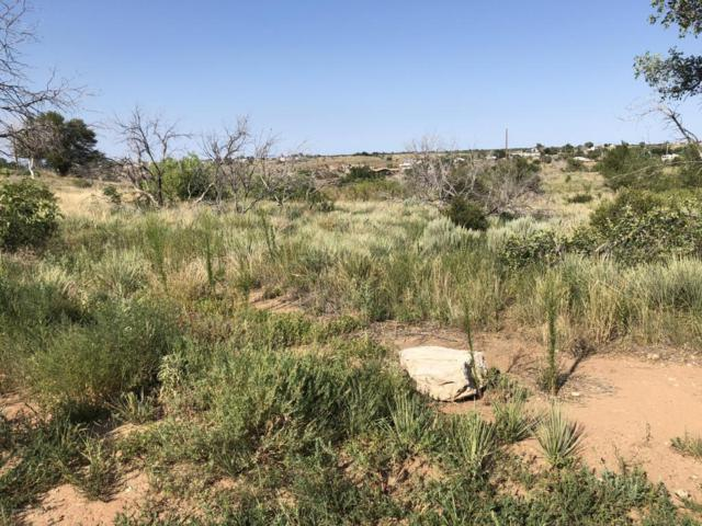 0 Golden Dr., Fritch, TX 79036 (#18-116831) :: Edge Realty
