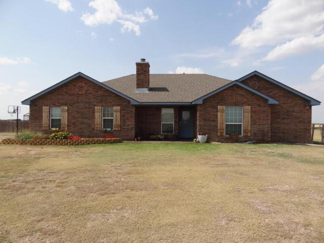 9104 Dan Dr., Amarillo, TX 79119 (#18-116932) :: Edge Realty