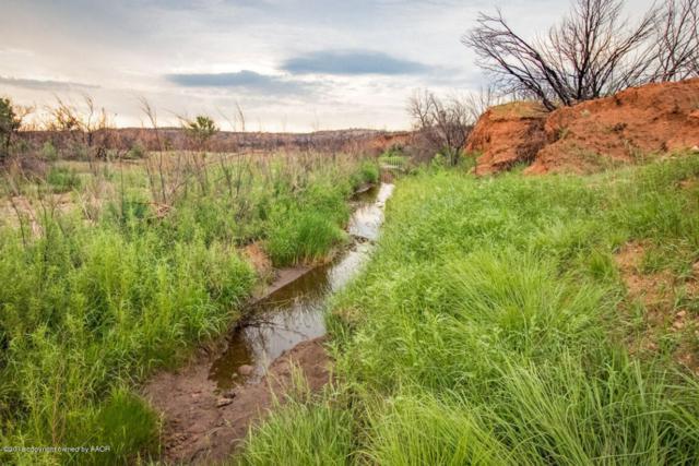 Frances Pearl Ranch, Claude, TX 79019 (#18-116998) :: Big Texas Real Estate Group