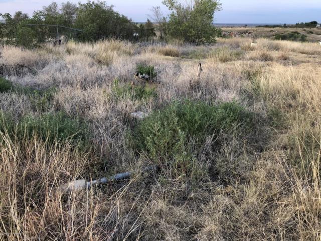 130 Estacado Trl, Fritch, TX 79036 (#18-117235) :: Edge Realty