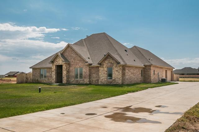 8110 Clara Allen Trl, Amarillo, TX 79118 (#18-117267) :: Gillispie Land Group