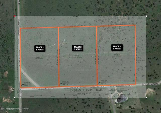 Indian Camp Trl. Tract 1, Canyon, TX 79015 (#18-117328) :: Gillispie Land Group