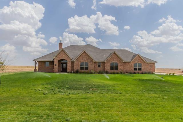 20501 Firefly Lane, Canyon, TX 79015 (#18-117643) :: Elite Real Estate Group