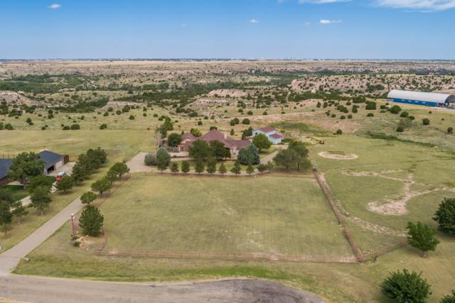 2800 Antelope Ridge, Canyon, TX 79015 (#18-117851) :: Big Texas Real Estate Group