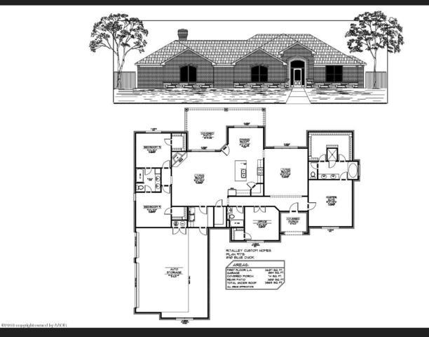 8110 Blue Duck Trl, Amarillo, TX 79118 (#18-118034) :: Gillispie Land Group