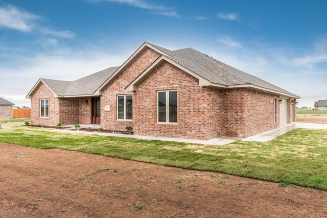 9551 Yesterday Ln W, Amarillo, TX 79119 (#18-118039) :: Elite Real Estate Group