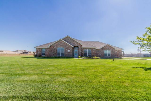 14611 Suzanna St, Amarillo, TX 79119 (#18-118048) :: Elite Real Estate Group