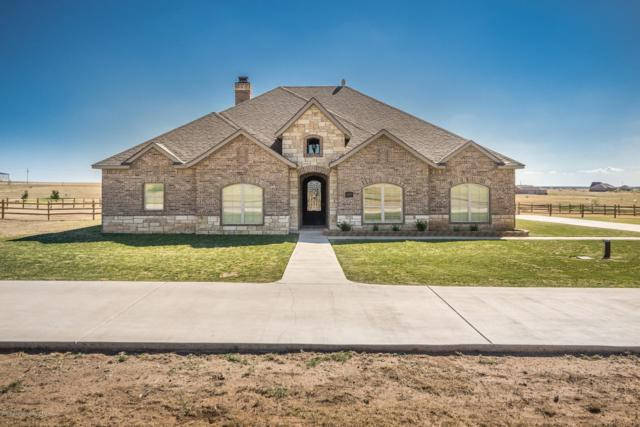 13151 Genevieves Way, Amarillo, TX 79118 (#18-118060) :: Lyons Realty
