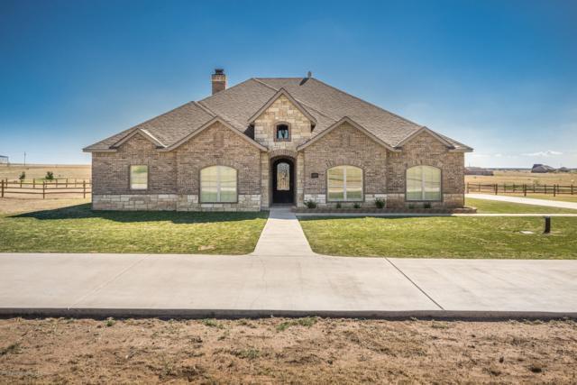 13151 Genevieves Way, Amarillo, TX 79118 (#18-118060) :: Edge Realty