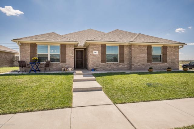2807 Ries Ln, Amarillo, TX 79118 (#18-118078) :: Elite Real Estate Group