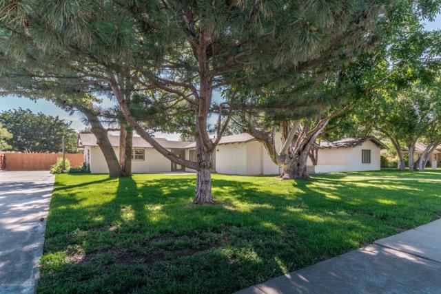 132 Liveoak, Hereford, TX 79045 (#18-118140) :: Lyons Realty