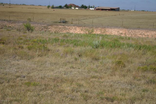 13300 Wandering Rd, Amarillo, TX 79118 (#18-118195) :: Edge Realty
