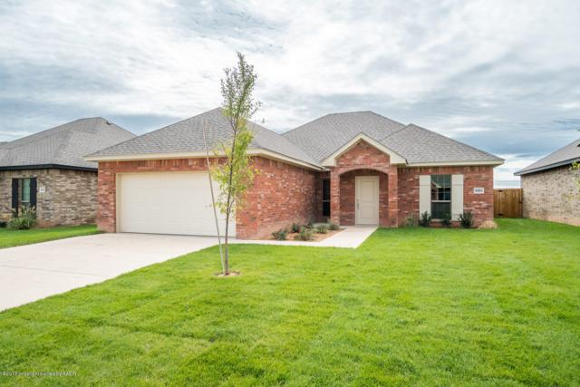 9303 Kori Dr, Amarillo, TX 79119 (#18-118309) :: Lyons Realty