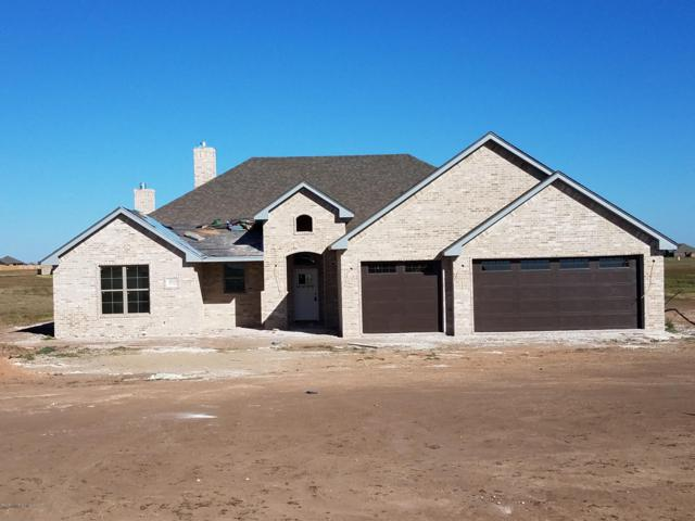 15125 Let It Be Dr, Canyon, TX 79015 (#18-118507) :: Elite Real Estate Group