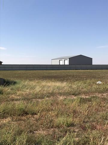 13330 Fm 2590, Amarillo, TX 79119 (#18-118587) :: Edge Realty