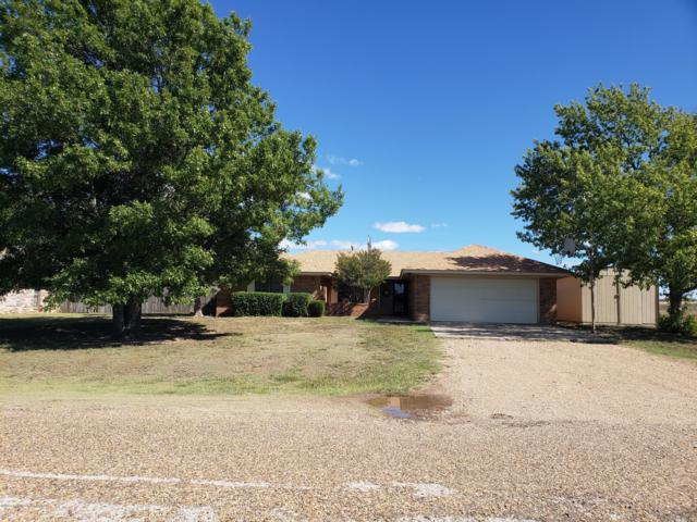 105 Levante, Fritch, TX 79036 (#18-118675) :: Elite Real Estate Group