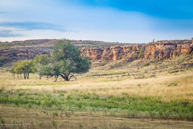 Wagon Wheel Ranch, Canyon, TX 79015 (#18-118825) :: Lyons Realty