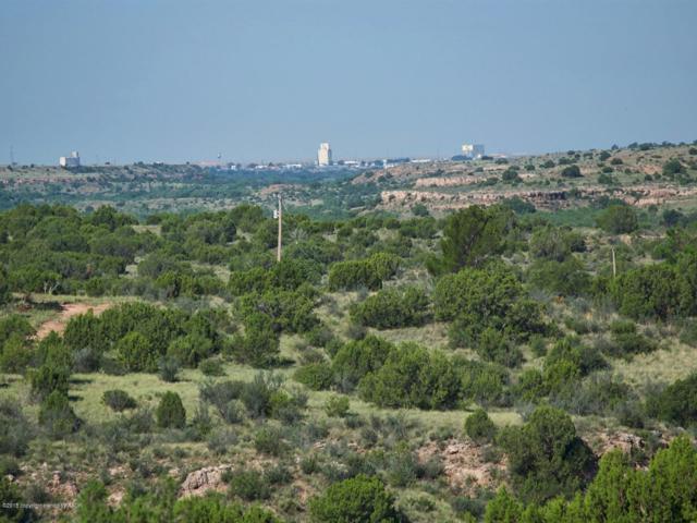 0 Juniper Rd, Amarillo, TX 79118 (#18-118936) :: Big Texas Real Estate Group