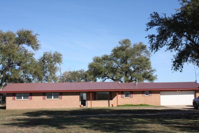 3029 Co Rd 9, Hereford, TX 79045 (#18-119272) :: Elite Real Estate Group