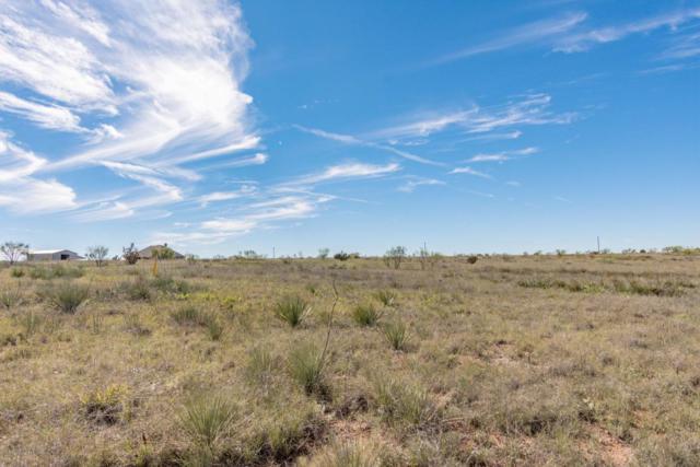 14300 Canyon Pass Rd, Amarillo, TX 79118 (#18-119318) :: Elite Real Estate Group