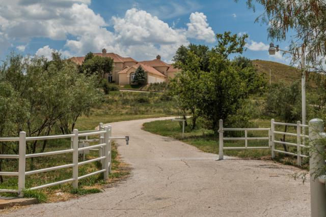 10401 Tascosa Rd, Amarillo, TX 79124 (#18-119323) :: Lyons Realty