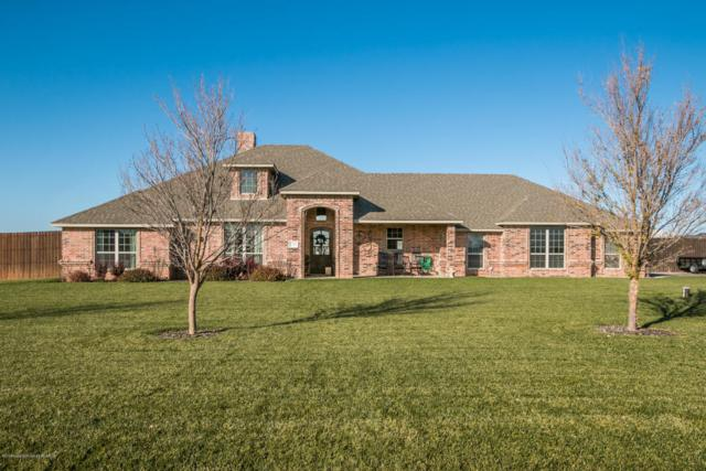 19350 Saddlehorn Rd, Amarillo, TX 79119 (#18-119475) :: Elite Real Estate Group