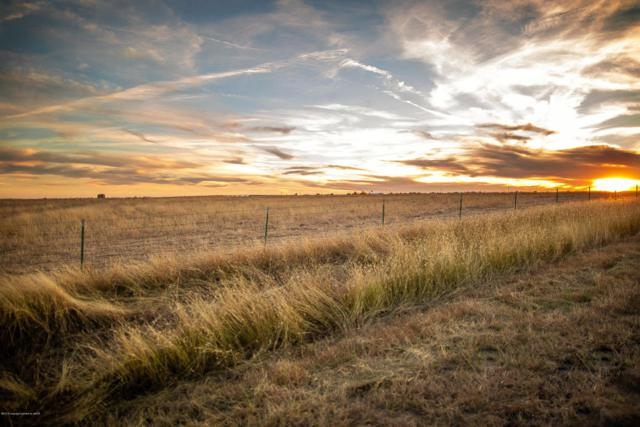 County Road D 1/2, Pampa, TX 79065 (#18-119510) :: Elite Real Estate Group