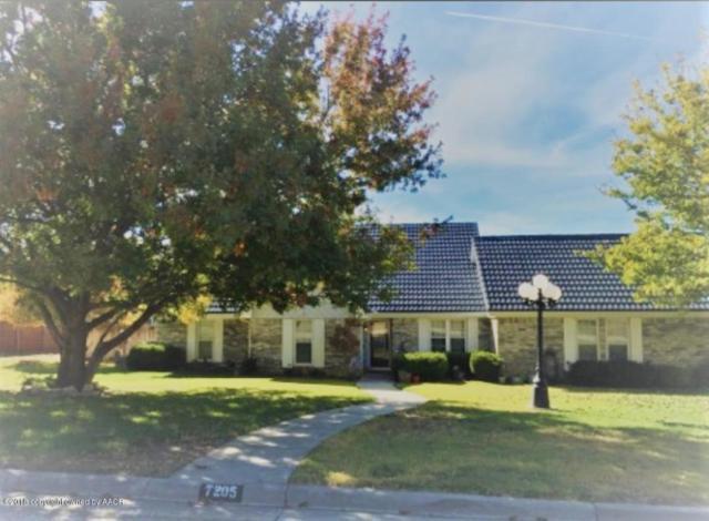 7205 Smoketree Dr DR, Amarillo, TX 79124 (#18-119542) :: Lyons Realty