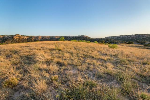 15750 Canyon Pass Rd, Amarillo, TX 79119 (#18-119661) :: Lyons Realty