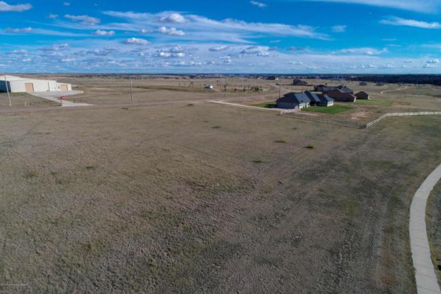 13100 Wilderness Trl, Amarillo, TX 79118 (#18-119751) :: Lyons Realty