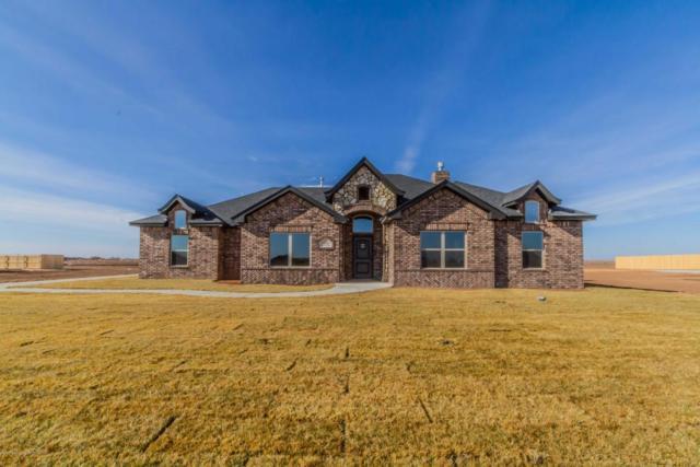 9240 Garrison Creek Drive, Amarillo, TX 79119 (#18-119894) :: Keller Williams Realty