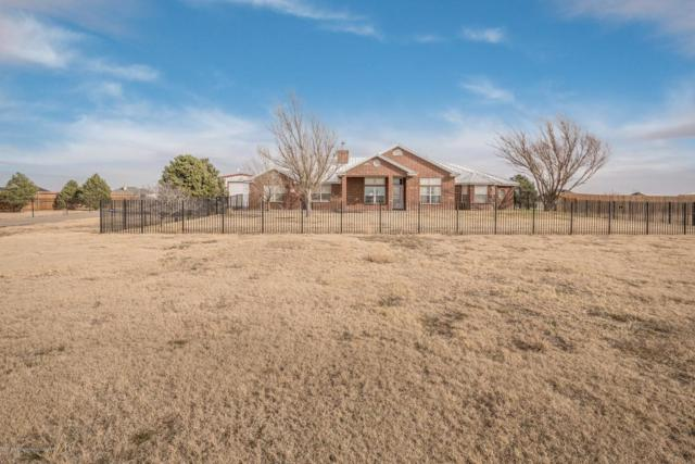 5601 Coyote Springs, Amarillo, TX 79119 (#18-119915) :: Lyons Realty