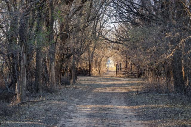 Skillet Ranch, Mclean, TX 79057 (#18-119958) :: Lyons Realty