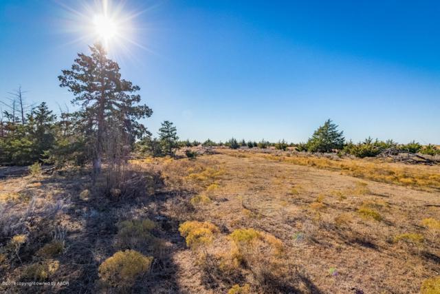 Graham Creek, Mobeetie, TX 79061 (#18-119959) :: Lyons Realty
