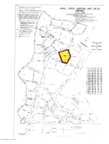 33 Citadel Dr., Amarillo, TX 79124 (#18-119965) :: Big Texas Real Estate Group