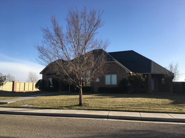 7501 Pennsylvania Dr, Amarillo, TX 79119 (#18-120048) :: Elite Real Estate Group
