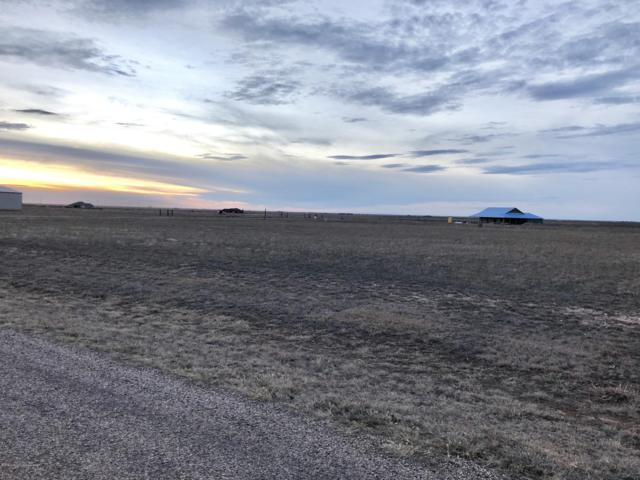 0 Elaine St, Amarillo, TX 79119 (#18-120068) :: Big Texas Real Estate Group