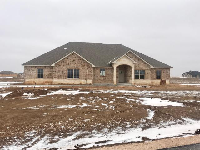 2501 Blue Mesa, Bushland, TX 79012 (#18-120201) :: Elite Real Estate Group