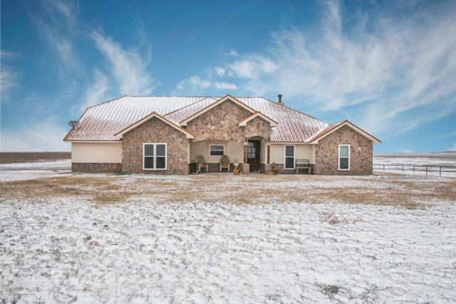1001 Co Rd 13, Panhandle, TX 79068 (#18-120224) :: Lyons Realty