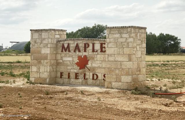 14000 Maple Dr, Amarillo, TX 79119 (#19-1113) :: Edge Realty
