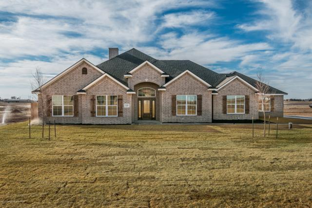 20380 Firefly Ln, Canyon, TX 79015 (#19-1133) :: Big Texas Real Estate Group