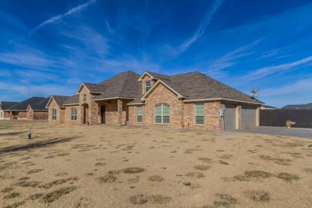 19250 Saddlehorn Rd, Amarillo, TX 79119 (#19-1158) :: Big Texas Real Estate Group