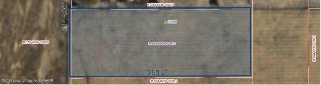 14450 Maple Dr, Amarillo, TX 79119 (#19-1168) :: Lyons Realty