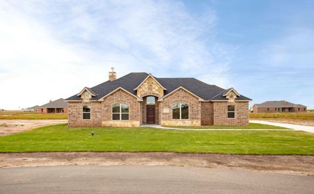 2431 Blue Springs, Amarillo, TX 79124 (#19-1186) :: Big Texas Real Estate Group