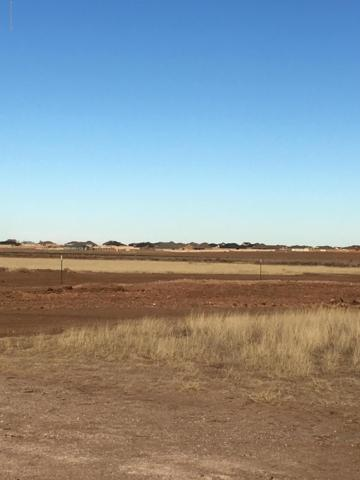 10250 Cessna Dr, Amarillo, TX 79119 (#19-1194) :: Lyons Realty