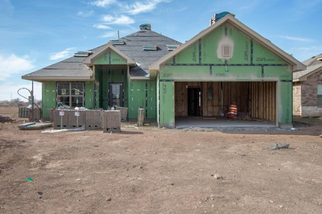 34 Living Way Ln, Canyon, TX 79015 (#19-1235) :: Big Texas Real Estate Group