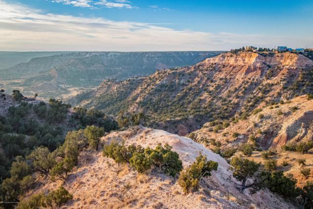 Palo Duro Tract 1, Canyon, TX 79015 (#19-1239) :: Lyons Realty